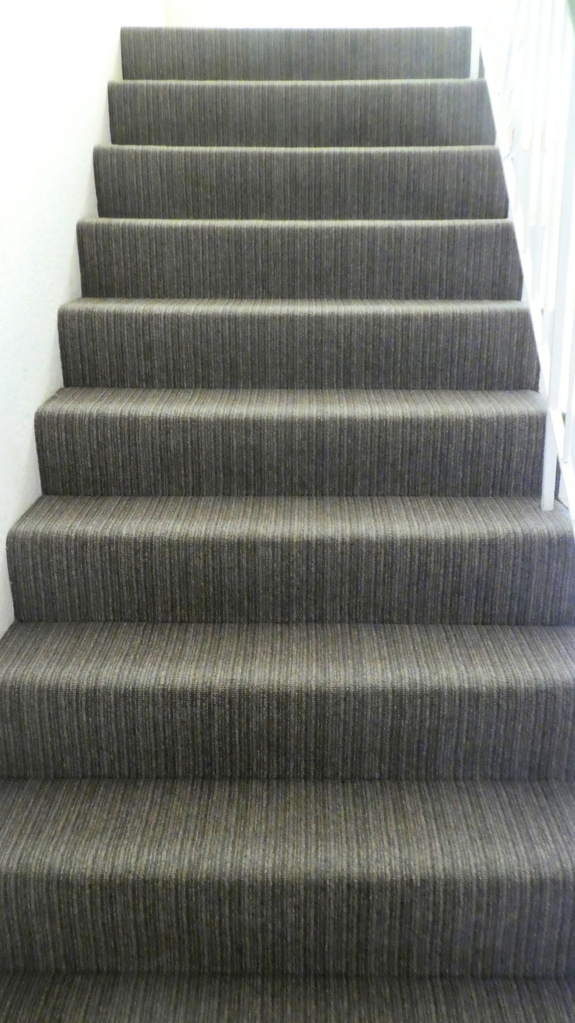 Front view of stairs with grey carpet flooring