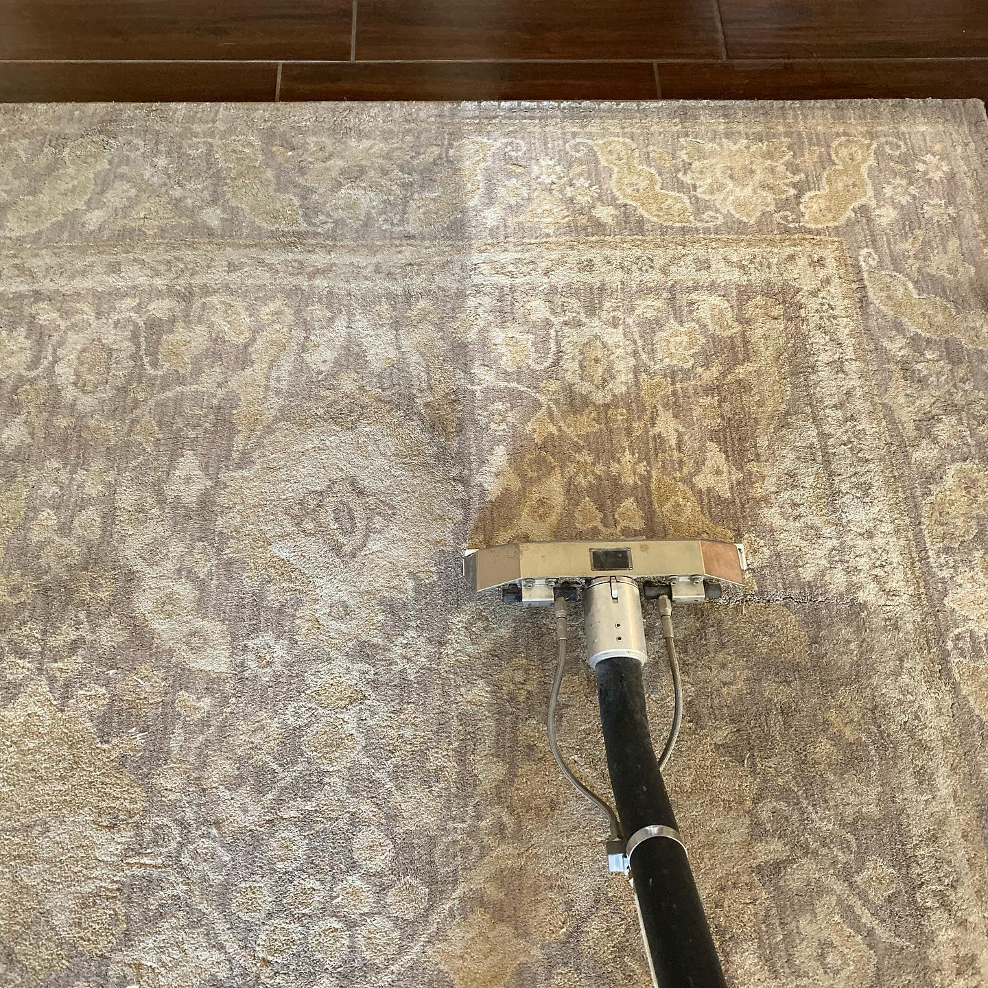 Rug cleaning in Salem